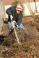 NWA Democrat-Gazette/FLIP PUTTHOFF<br />TIME FOR A TRIM<br />Merced Cervantes with the Rogers School District  trims bushes on Wednesday Jan. 3 2017 at Rogers Heritage High School. Cervantes and Genaro Duenas did maintenance near school's main entrance.