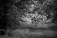 peloton coming back up from the Barrage de la Gileppe<br /> <br /> stage 4: Hotel Verviers - La Gileppe (187km)<br /> 29th Ster ZLM Tour 2015
