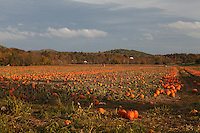 Oct 25, 2010. Fall colors from Nelson and Madison Counties. Mandatory Credit: Andrew Shurtleff