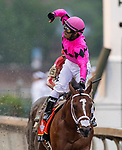 LOUISVILLE, KENTUCKY - MAY 04:  Maximum Security with Luis Saez crosses the wire first but is later disqualified in the Kentucky Derby at Churchill Downs in Louisville, Kentucky on May 04, 2019. Evers/Eclipse Sportswire/CSM