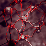 Biological Neural network of human brain, interconnected neurons, brain cells and connections, neuroscience, scientific conceptual 3D illustration