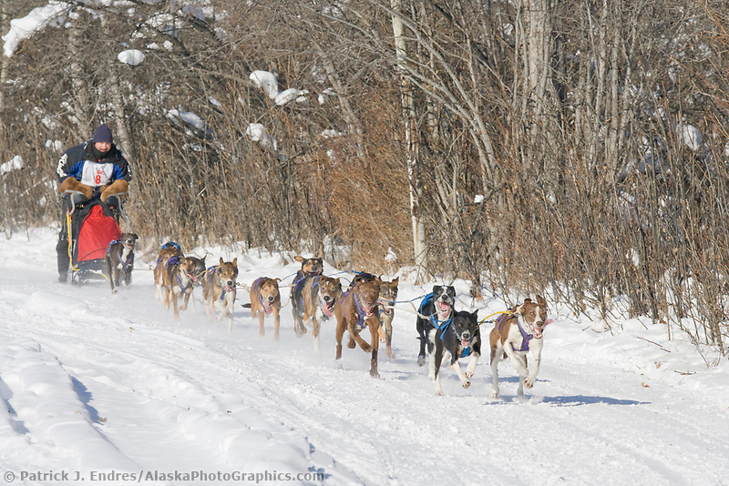 Musher Rob Pebies, 2007 Open North American Championship sled dog race (the world's premier sled dog sprint race) is held annually in Fairbanks, Alaska.