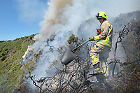 2017 06 18 Warm weather causes gorse fire in Swansea, Wales, UK