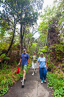 tourists, hiking rainforest trail under tree fern, Hapuu, Cibotium sp., and endemic Ohia Lehua, Metrosideros polymorpha, Kilauea, Hawaii Volcanoes National Park, Big Island, Hawaii, USA, MR