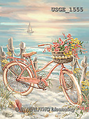 Dona Gelsinger, LANDSCAPES, LANDSCHAFTEN, PAISAJES, paintings+++++,USGE1555,#L# #161# bicycle