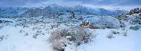 902000016 a panoramic view of pre-dawn light on mount whitney mount russell and lone pine peak during a clearing snowstorm with fresh snow on the eastern sierras and the granite boulders of the alabama hills in the blm protected lands near lone pine kern county california