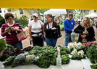 Customers line up in a rush to grab the last of the greens from the Oak Ridge Valley Farm booth at the McKinney Farmers Market at the Chestnut Square Historic Village in McKinney, Texas, Saturday, April 26, 2009.  Tomato and pepper season is just around the corner as greens near the end of their season. ..MATT NAGER/ SPECIAL CONTRIBUTOR