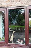 Imprint of a wood pigeon after it flew into a window, Bouldon, Ludlow, Shropshire.