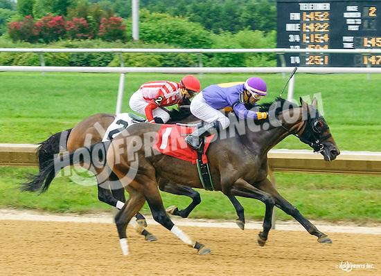 Inner Demons winning at Delaware Park on 7/13/16