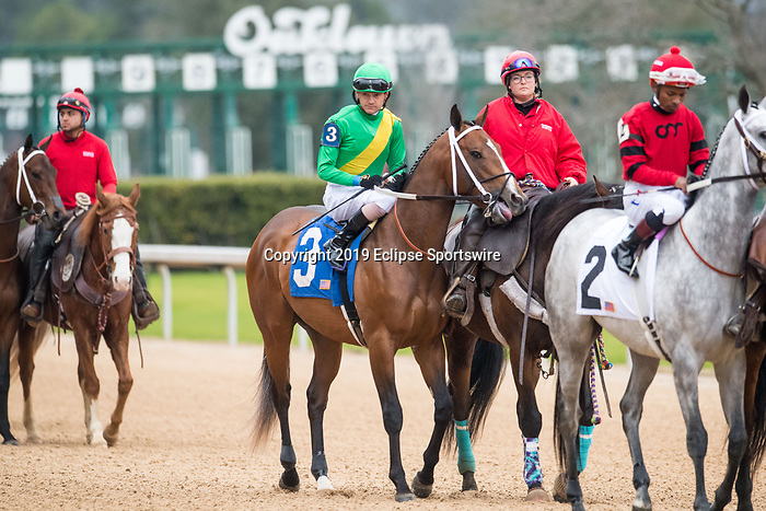 February 17, 2020: Shoplifted (3) with jockey Brian Joseph Hernandez Jr. aboard during the Southwest Stakes at Oaklawn Racing Casino Resort in Hot Springs, Arkansas on February 17, 2020. Ted McClenning//Eclipse Sportswire/CSM