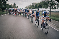 Team Quickstep Floors pacing the peloton<br /> <br /> 97th Brussels Cycling Classic (1.HC)<br /> 1 Day Race: Brussels &gt; Brussels (201km)