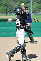 PNLL AA Marlins action 2015. (Photo by AGP Photography)