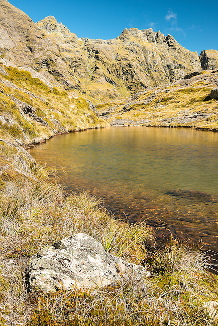 Alpine tarn near Routeburn Track with Serpentine Range in background, Mt. Aspiring National Park, UNESCO World Heritage Area, Central Otago, New Zealand, NZ