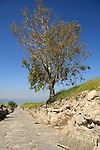 Mount Susita, Golan Heights. Ruins of Hippos, the site of a Greco-Roman city. The main road