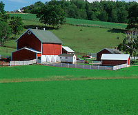 Dane County, WI<br /> Red barn and dairy farm buildings in green summer fields