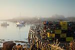 Morning fog in Corea village, Gouldsboro, ME, USA