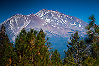 Mt. Shasta from Shasta View Treehouse Meadow, Mt. Shasta, California, US