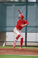 GCL Phillies West Tucker Maxwell (29) bats during a Gulf Coast League game against the GCL Yankees East on August 3, 2019 at the Carpenter Complex in Clearwater, Florida.  The GCL Phillies West defeated the GCL Yankees East 15-7 in a completion of a game that was originally started on July 26, 2019.  (Mike Janes/Four Seam Images)
