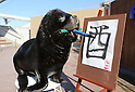 "January 3, 2017, Tokyo, Japan - 15-year-old male sea lion ""Leo"" writes the word ""Rooster"" in Chinese character as part of a New Year's attraction at the Hakkeijima Sea Paradise aquarium in Yokohama  on Tuesday, January 3, 2017. Leo wrote ""Rooster"" to celebrate the ""Year of Rooster"" of Chinese zodiac.  (Photo by Yoshio Tsunoda/AFLO) LWX -ytd-"
