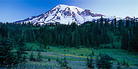 Wildflower meadow spread below Mount Rainier at sunrise. Paradise area by the Wonderland Trail, Mount Rainier National Park, Washington State.....Photographed in 6X12 format with Velvia 50 film.
