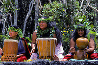 Hawaiian hula ladies chanting with drums