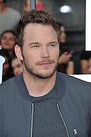 Chris Pratt at the 2014 MTV Movie Awards at the Nokia Theatre LA Live.<br /> April 13, 2014  Los Angeles, CA<br /> Picture: Paul Smith / Featureflash