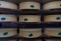 Wheels of Beaufort Cheese in the cellar at the Beaufort Dairy, September 2007.