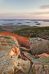 View of the Porcupine Islands from Cadillac Mountain in Acadia National Park, Maine