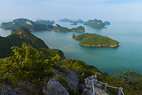 Natural trail in Ko Wua Ta Lap, Ang Thong national marine park, Thailand