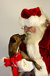 Santa Claus and a dog with a bone for a gift