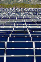 Solar Panels in Farm