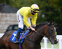 Flirty Rascal ridden by Kieran Shoemark goes down to the start of The Irish Stallion Farms EBF Fillies' Nursery Stakes       during Horse Racing at Salisbury Racecourse on 11th September 2020