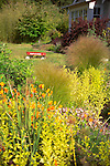 Close focus shot looking at a mixed bed of ornamental grasses, shrubs, and flowering orange California Poppies, with a red wagon sitting behind in soft focus on Vashon Island in Washington State's Puget Sound. Garden design by Stenn Design