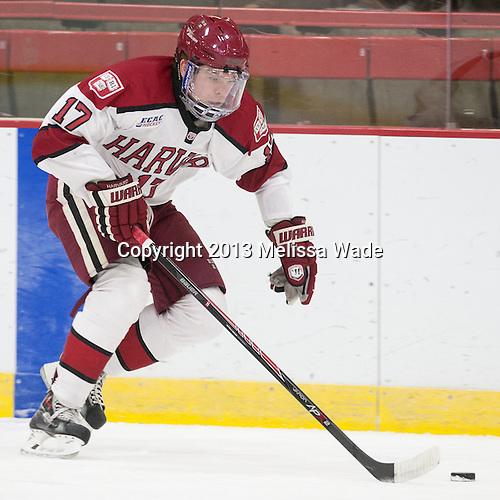 Sean Malone (Harvard - 17) - The visiting Boston College Eagles defeated the Harvard University Crimson 5-1 on Wednesday, November 20, 2013, at Bright-Landry Hockey Center in Cambridge, Massachusetts.