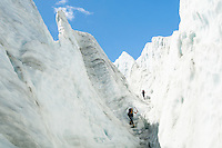 Climbers on Franz Josef Glacier,  Westland National Park, West Coast, UNESCO World Heritage Area, South Westland, New Zealand
