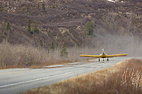Thrush agricultural crop-duster aircraft uses the Richardson highway as a runway when transferring Sockeye salmon fry raised at the Gulkana Hatchery to a nearby lake.