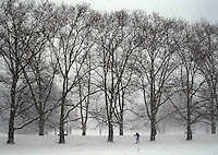 Patrick O'Connor, of Doylestown, Pennsylvania, navigates through a snow storm by cross country skiing, Thursday, December 5, 2002 in Doylestown, Pennsylvania. The Philadelphia region was expecting 4-6 inches of snow from it's first major winter storm in two years. (Photo by William Thomas Cain/photodx.com)