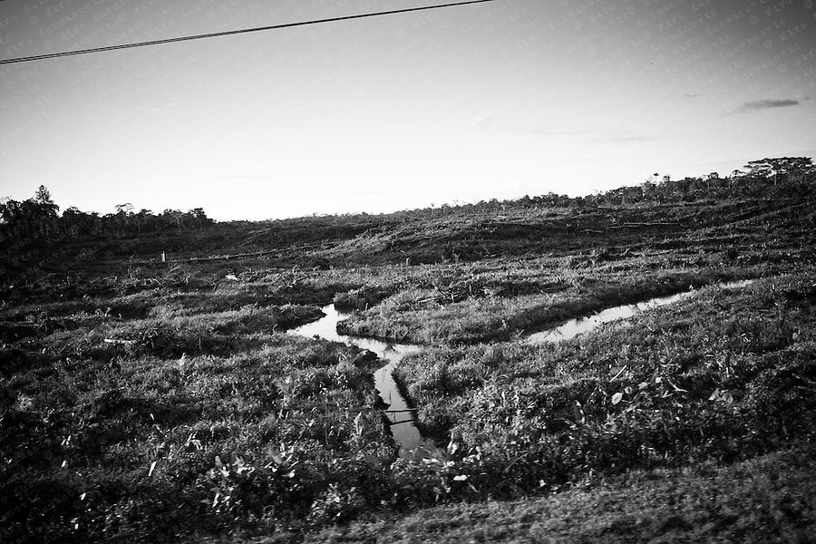 Contaminated land in Ecuadorean Amazon rainforst near Lago Agrio.
