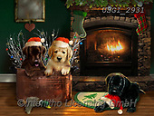 GIORDANO, CHRISTMAS ANIMALS, WEIHNACHTEN TIERE, NAVIDAD ANIMALES, paintings+++++,USGI2931,#xa# ,dog,dogs