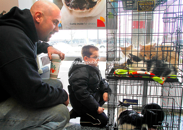 TORRINGTON, CT- 05 JANUARY 2013 010513JW08 - Joe Yezierski and his son Riley Yezierski age 5 of Terryville look at some of the cats for adoption at Petco Saturday afternoon. The cats are up for adoption through the Feline Friends Group during Petco's National Pet Adoption Weekend January 5-6..Jonathan Wilcox Republican American..