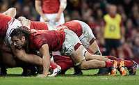 Wales' Josh Navidi packs down at the scrum<br /> <br /> Photographer Simon King/CameraSport<br /> <br /> International Rugby Union - 2017 Under Armour Series Autumn Internationals - Wales v Australia - Saturday 11th November 2017 - Principality Stadium - Cardiff<br /> <br /> World Copyright &copy; 2017 CameraSport. All rights reserved. 43 Linden Ave. Countesthorpe. Leicester. England. LE8 5PG - Tel: +44 (0) 116 277 4147 - admin@camerasport.com - www.camerasport.com