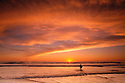 Cardiff Reef Sunset