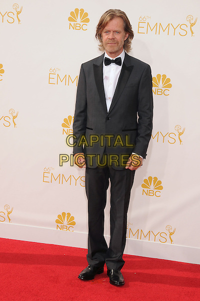 25 August 2014 - Los Angeles, California - William H. Macy. 66th Annual Primetime Emmy Awards - Arrivals held at Nokia Theatre LA Live. <br /> CAP/ADM/BP<br /> &copy;BP/ADM/Capital Pictures