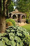 Vallamont Drive, Williamsport, PA. Weavers' home. Backyard garden and gazebo. Hosta 'Abiqua Drinking Gourd'