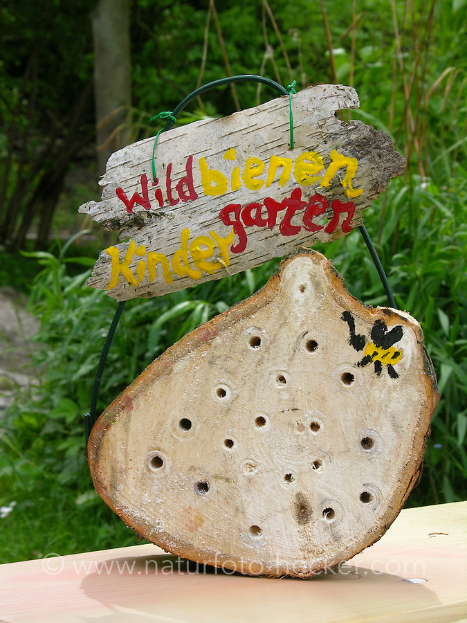 Kind, Kinder bauen Insekten-Hotel, Insektenhotel, Nisthilfe für Hymenopteren, Baumscheibe mit Bohrlöchern bietet Nistmöglichkeiten für solitäre Wildbienen und Wespen