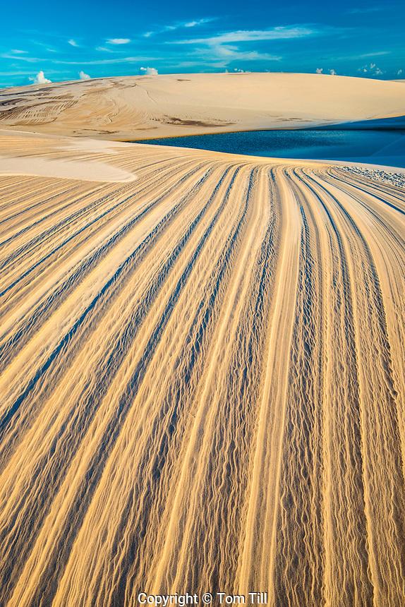 Dune patterns and rainwater lakes, Lencois Maranhenses National Park, Brazil, Atlantic Ocean Rainwater  ponds trapped in white dunes, Lencois Maranhenses National Park, Brazil, Atlantic Ocean