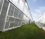 Foto: VidiPhoto <br /> <br /> VELDEN &ndash; De drie gebroeders Verbeek uit het Limburgse Velden telen al ruim twintig jaar onbelichte biologische komkommers, tomaten en paprika&rsquo;s onder inmiddels 10 ha. glas. Het Nieuwe Telen is al enige tijd geleden ingezet en niet zonder succes. Met onder andere dubbele energieschermen, klimaatbeheersing en electriciteit van eigen zonnepanelen (350) is inmiddels een maximale energiebesparing bereikt. Zo wordt buitenlucht naar binnen gezogen en met een warmtewisselaar op temperatuur gebracht. Tijd dus voor de volgende stap, vertelt mede-eigenaar Leo Verbeek. De teler wil namelijk van zijn fossiele brandstof af. Over het beste alternatief voor gas wordt op dit moment nagedacht, maar aardwarmte wordt het zeker niet. Dat is nog niet genoeg doorontwikkeld en technisch een te groot risico, vindt de Limburgse ondernemer. &ldquo;Als bedrijf zijn we daarvoor ook te klein.&rdquo; Op termijn acht Verbeek een fossielvrije glastuinbouw zeker mogelijk, maar dan moet er bij burger en overheid nog wel een knop op. &ldquo;Met biomassa is ook nog veel te bereiken zoals een biomeiler, dat is warmte uit compostering. Een uitdaging bij duurzame energie voorziening is en blijft de Co2- voorziening.&rdquo;