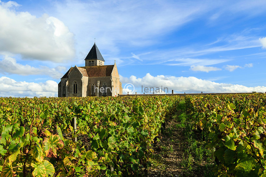 France, Yonne(89), Préhy, église Notre-Dame dans les vignes en automne // France, Yonne, Prehy, in the vineyards in autumn, Church of Our Lady