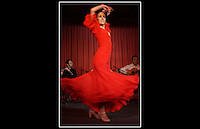 Flamenco Dancer - Alcalá de Henares, Madrid, Spain - Craft Food International - 13th March 2002