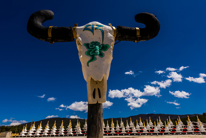 Yak skull artwork, Shangri La, Yunnan Province, China.